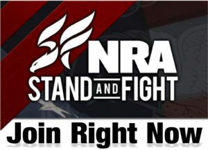 NRA_Join_fight_1553420_std